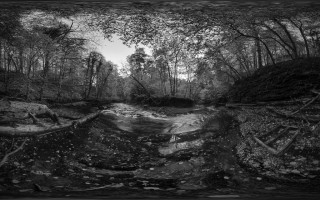 This is Eden - The Gelt river in Gelt Woods near Brampton