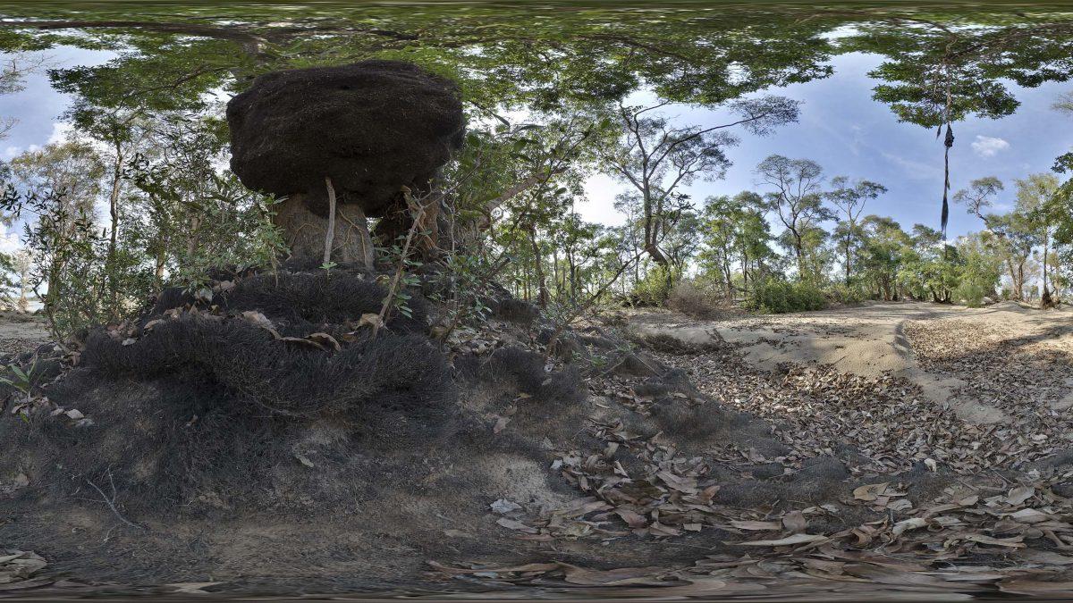 Ramsar Site 999